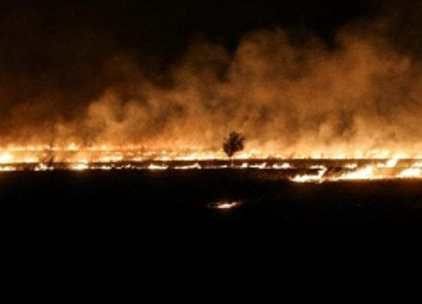 МЧС сообщает о высокой пожароопасности в Волгограде на выходных