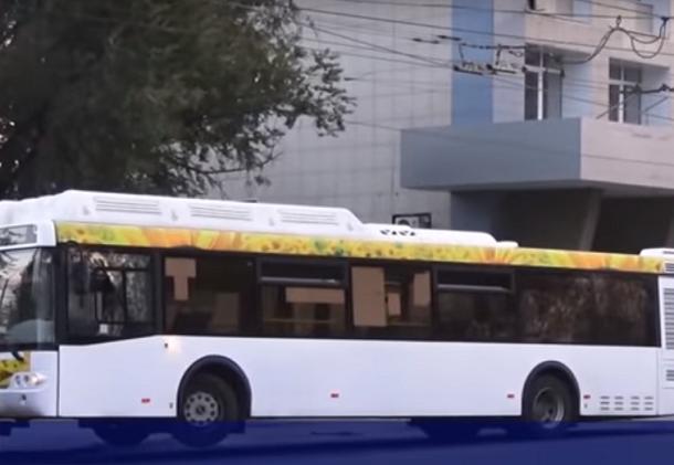 ВВолгограде кондуктор автобуса «ПитерАвто» пробовала высадить изсалона ветерана войны
