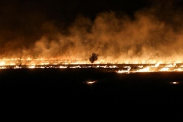 Высокая пожароопасность наблюдается в Волгоградской области