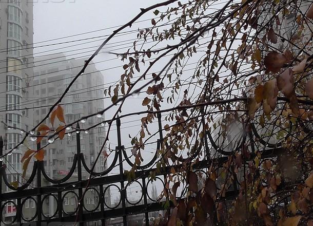 Туман и приятный мороз проводят волгоградцев на выходные