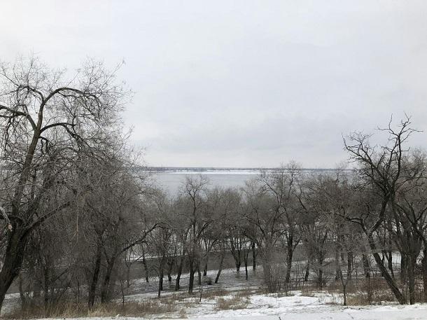 С небольшого снега и «нуля» начнется новая рабочая неделя в Волгограде