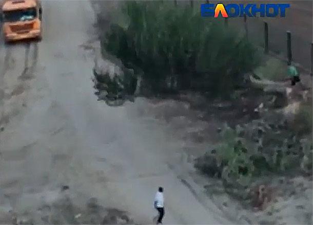 Варварскую вырубку деревьев в пойме реки Царица сняли на видео в Волгограде