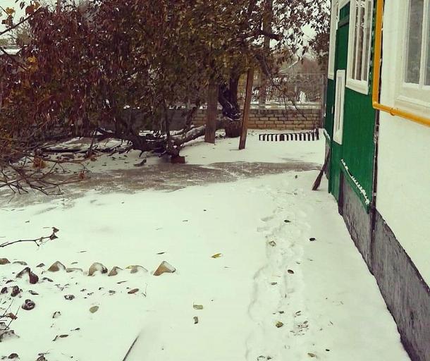 С началом зимы: первый снег выпал в Волгоградской области