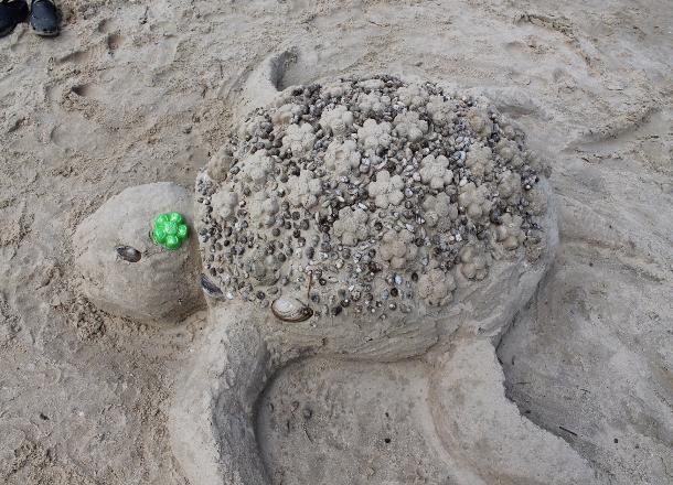 Волгоградцы смогут вылепить рыбу из песка и попробовать уху