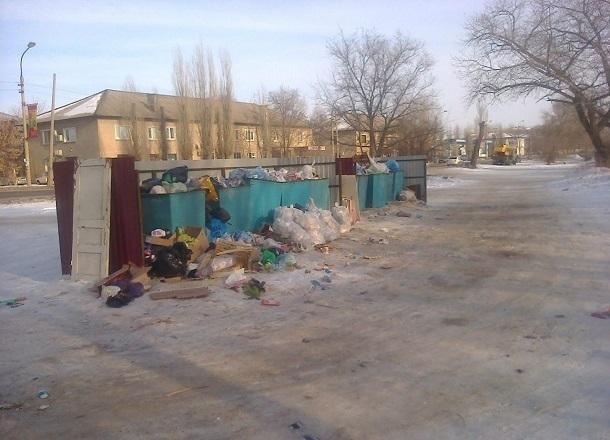 Жители Волгоградской области высказались против проведения «мусорной» реформы