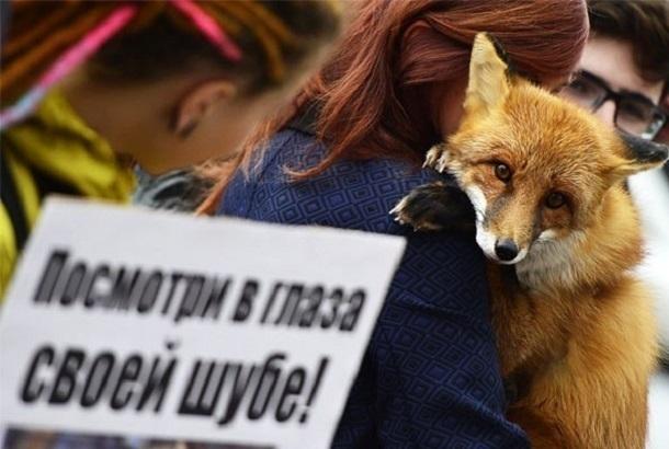 Акция против убийства ради пафоса прошла в центре Волгограда