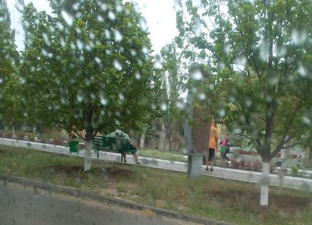 Волгоградец скончался во время скандинавской ходьбы, а женщина умерла утром на лавочке