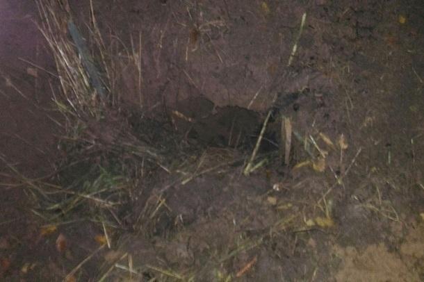 «Блокнот Волгограда» публикует видео с места обнаружения убитых Масленниковым волжанок