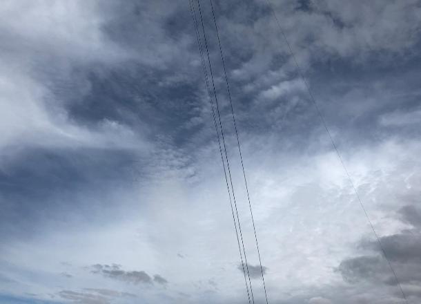 Усиление ветра до 23 м/с ожидается в Волгоградской области