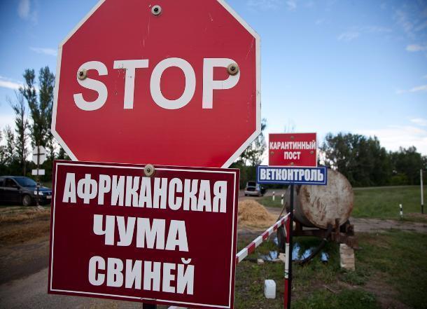 Среднеахтубинский район отделили от Волгограда карантинными постами