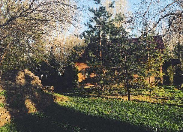 Пенсионер исполосовал соседку ножом из-за тени деревьев на севере Волгограда