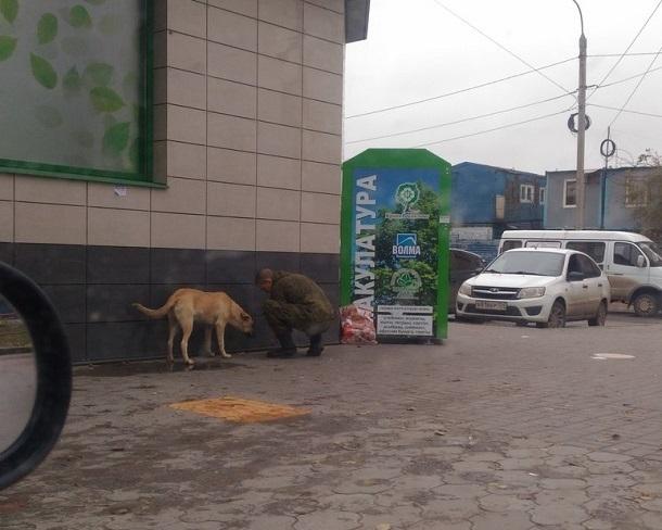 Волгоградцы похвалили молодого солдата, накормившего бездомного пса