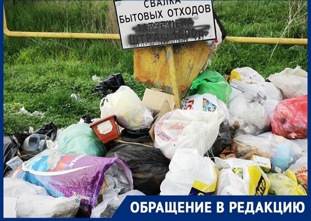 Стоянки с мусором оккупировали дорогу к городу Котельниково Волгоградской области