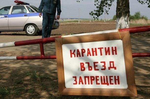 Натерритории 11 многоквартирных домов вВолгограде ввели карантин из-за бешенства животных