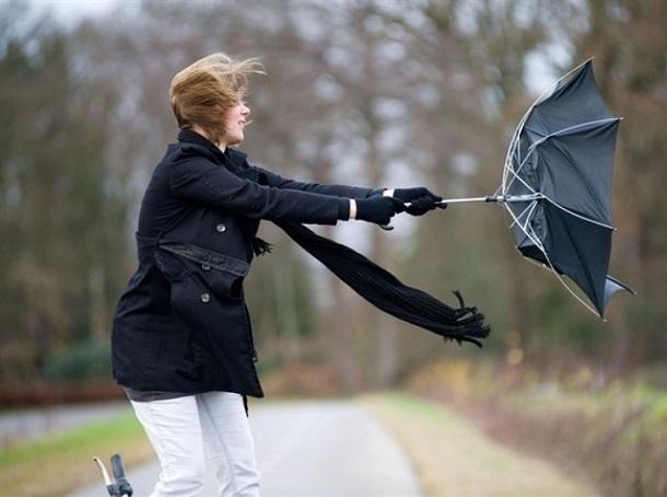 Ветер еще больше усилится в Волгоградской области