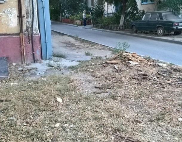 Волгоградцы по два месяца просят коммунальщиков убрать мусор