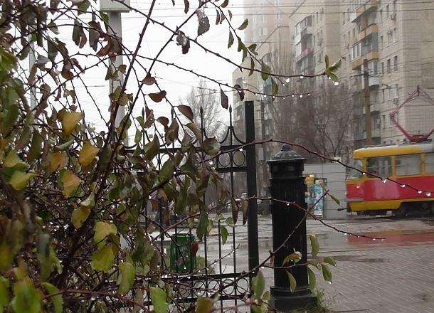 В Волгограде сменится направление ветра