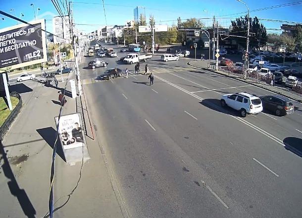 Скрывшийся после аварии с пешеходом водитель «четырнадцатой» попал на видео в Волгограде