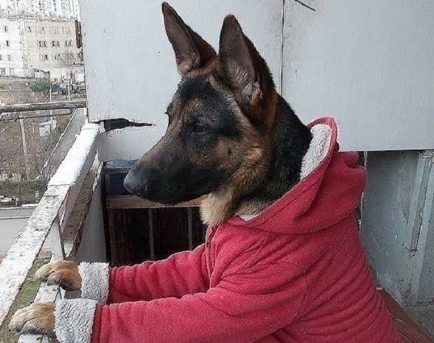 В Волгограде похолодает до -12ºС