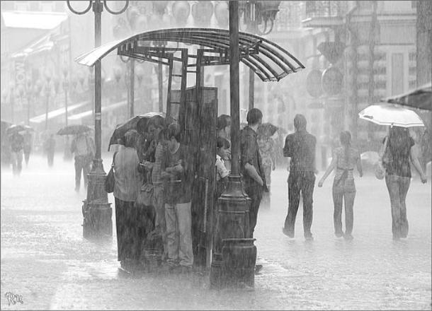 Тепло вВолгоградскую область возвратится ссамого начала рабочей недели: до +18