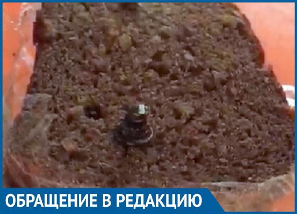 Волгоградка обнаружила клепку в буханке хлеба