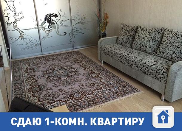 Квартира со свежим ремонтом у Ворошиловского ТЦ по смешной цене