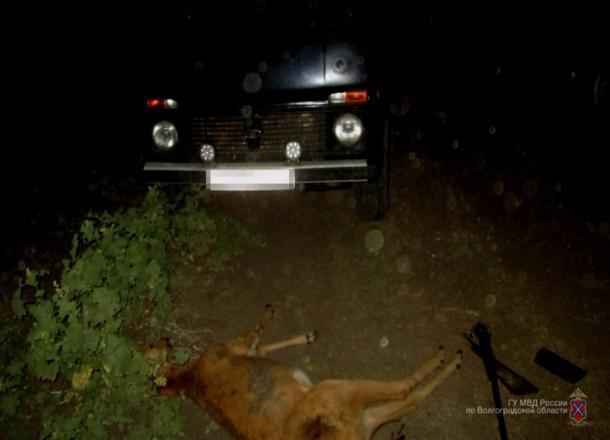 Под Волгоградом браконьер на «Ниве» подстрелил косулю