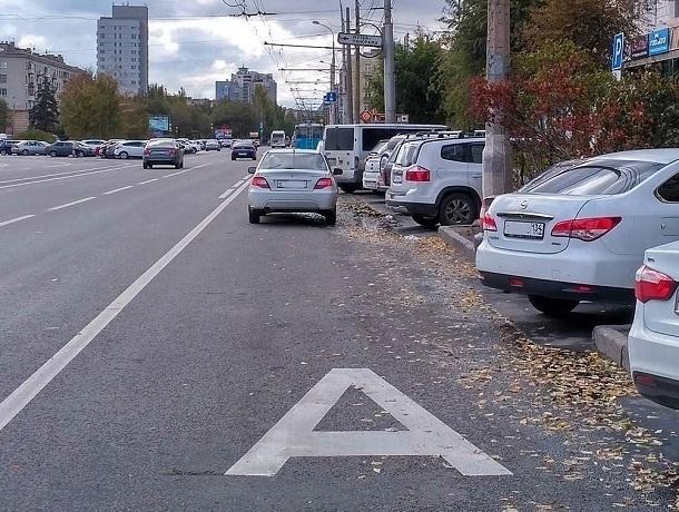 Выделенная полоса мало что изменила для общественного транспорта в Волгограде