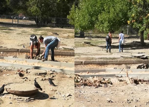 Предприимчивые волгоградцы выложили дорожку к садику из срезанных кусков асфальта