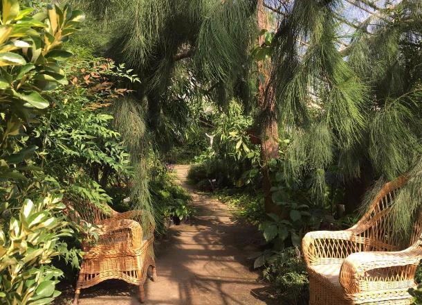 Водоем сводопадом построили вботаническом саду