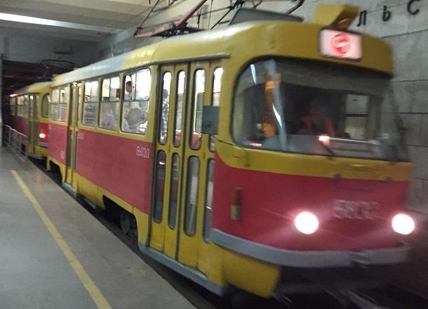 Рухнувшая на трамвайные пути ветка дерева в Волгограде парализовала движение