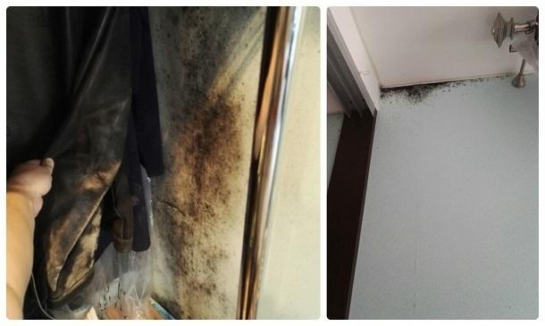 Волгоградцы живут в покрытом плесенью доме без отопления