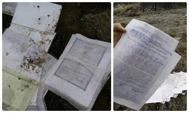 Гражданин Волгограда отыскал неуничтоженный архив детского сада