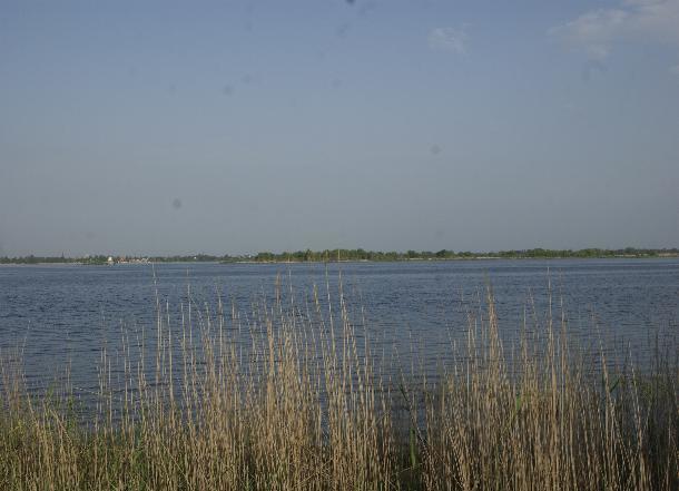 Мужчина рухнул с моста и утонул по дороге на дачу под Волгоградом
