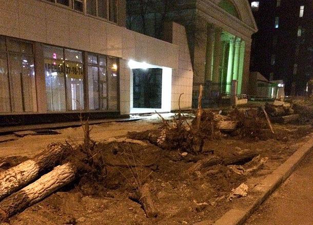 Продолжается уничтожение зеленых насаждений в Волгограде