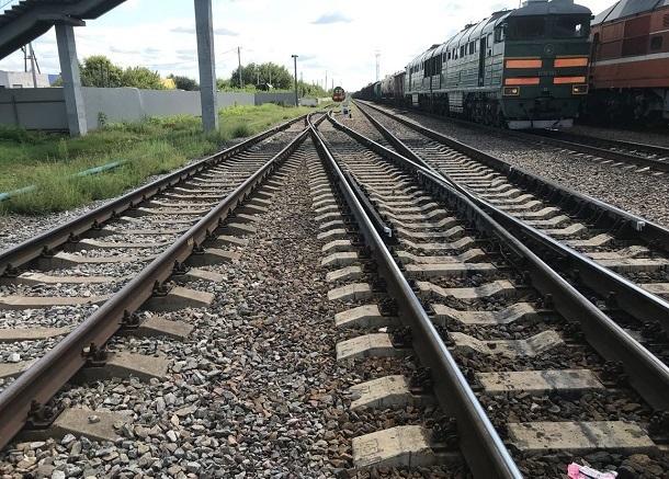 Пассажирский поезд Астрахань-Волгоград сбил табун лошадей