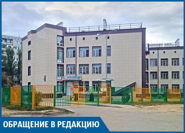 Свора диких собак атаковала детский сад на юге Волгограда