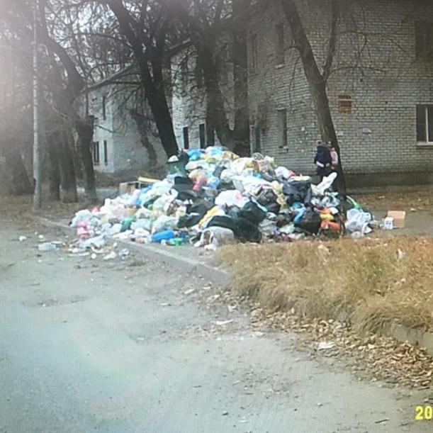 Блогер опубликовал фото утопающего в мусоре города-героя Волгограда
