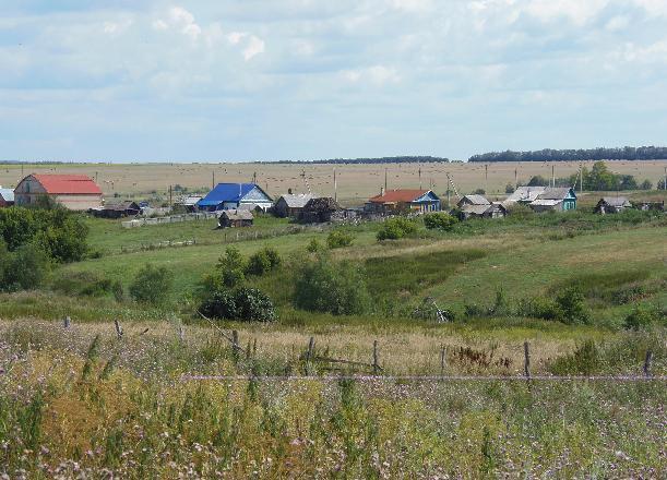 30 млн рублей получат фермеры Волгоградской области, пострадавшие от АЧС