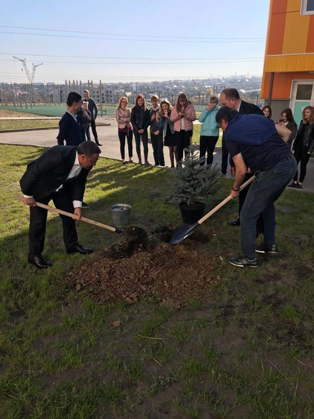 Скоро выборы: два волгоградских депутата ради хорошего снимка посадили ёлочку