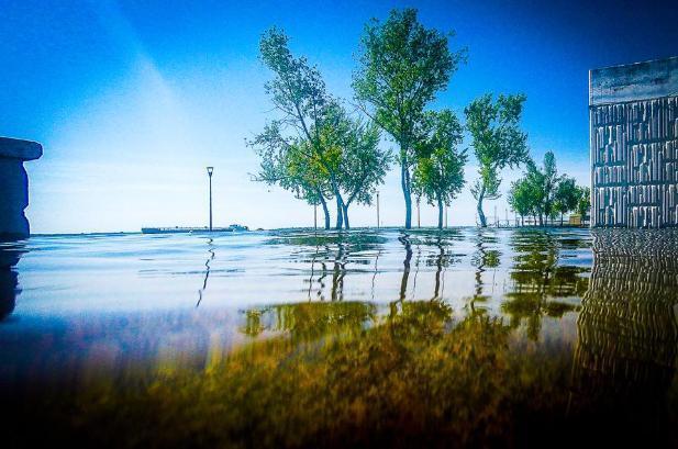 ВВолгоградской области предполагается ветер ипрохлада
