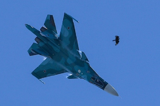 Обнаружен плот разбившегося на Дальнем Востоке в Су-34 волгоградца