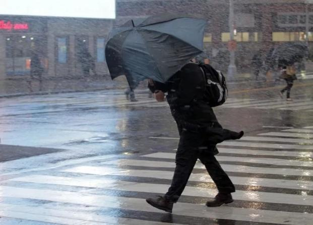 Дождь, гроза и шквалистый ветер ждут сегодня волгоградцев