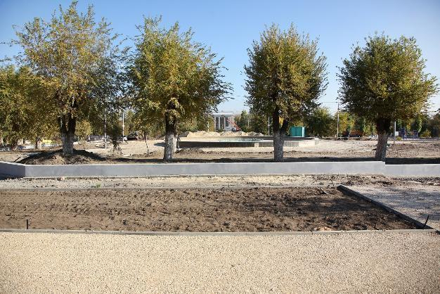 Парк в Советском районе Волгограда предложили назвать именем Андрея Бочарова