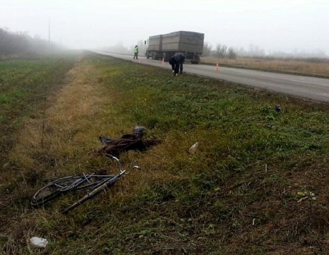 ВЧернышковском районе шофёр  КамАЗа сбил насмерть велосипедиста и исчез