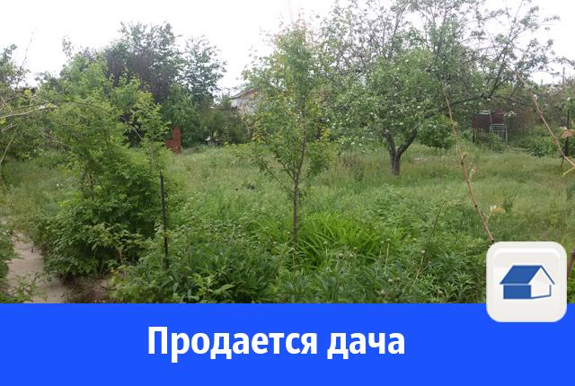 Продам дачу за 80 тысяч рублей