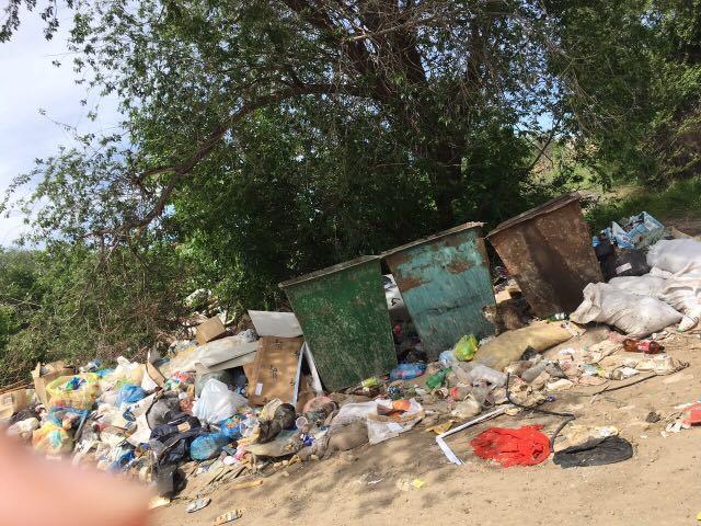 Жители Волгограда захламили пространство перед мусоркой и жалуются на коммунальщиков