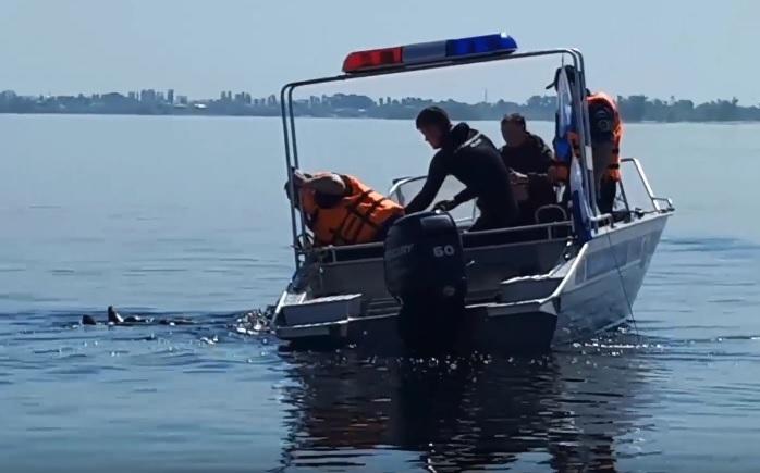 Двух утопающих «японцев» вытащили из воды волгоградские спасатели