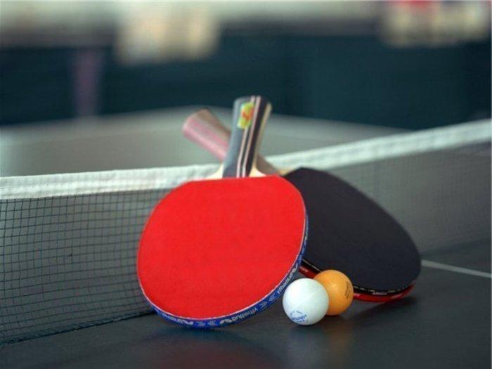 скачать бесплатно игру пинг понг - фото 7