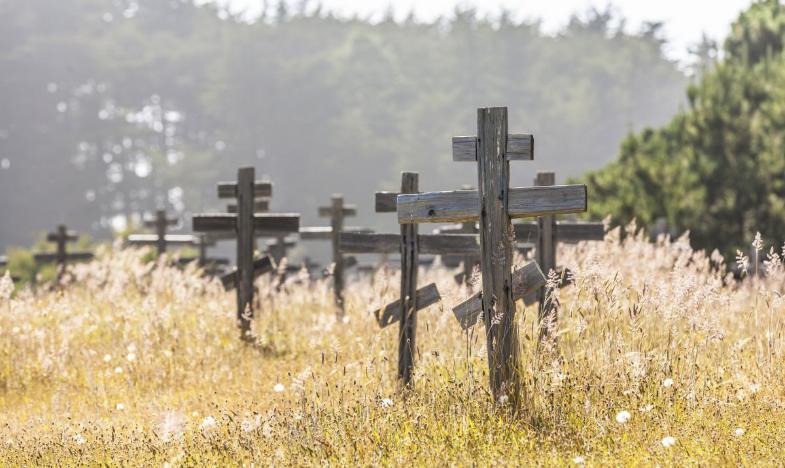 Пять волгоградцев умерли от отравления алкоголем в минувшем году